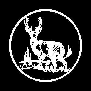 Camp Deer Run - Winnsboro, TX